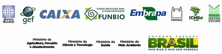Régua logos